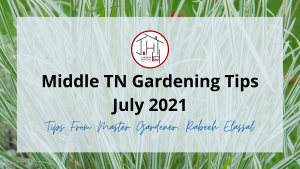 Middle TN Gardening Tips | July 2021